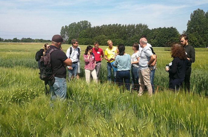 Ryhmä ihmisiä keskustelee seisten viljelmien keskellä. Taustalla sininen taivas