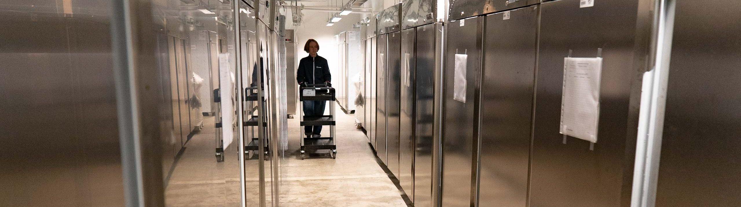 Kvinna går med vagn längs lång rad av frysar i rostfritt stål.