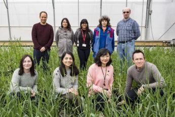 Nio personer står uppställda framför kameran i ett växthus med gröna plantor omkring sig