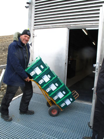 NordGen's Seed Vault Coordinator Åsmund Asdal standing in front of the Seed Vault with plastic boxes containing peas from the John Innes Centre