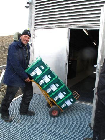 NordGens Frövalvskoordinator Åsmund Asdal står framför frövalvets förr med fem gröna plastlådor med ärtor från John Innes Centre