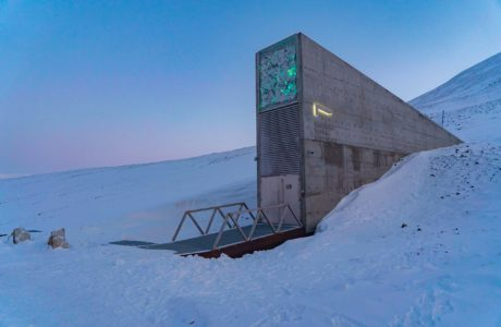 Exterior image of Svalbard Global Seed Vault surrounded by snow and with a sky of blue and pink in the background.