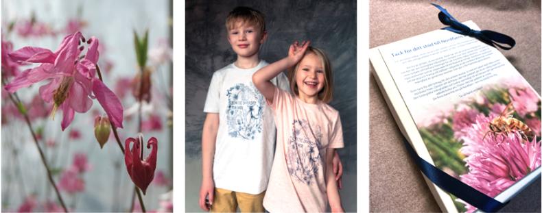 Tre bilder som beskriver utbudet i NordGens webbutik. Bild på akleja, barn i t-shirt och fröpaket