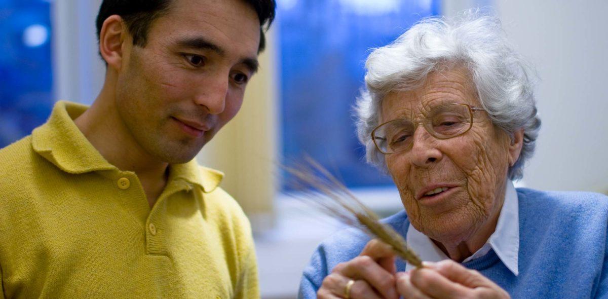 En ung man i gul tröja tittar på ett kornax och lyssnar till en äldre kvinna i blå tröja och glasögon.