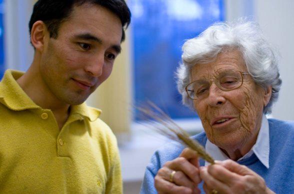 Keltapaitainen nuorimies katselee ohrantähkää ja kuuntelee vanhaa naista, jolla on sininen pusero