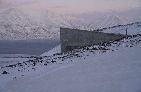 Globala frövalvet på Svalbard.